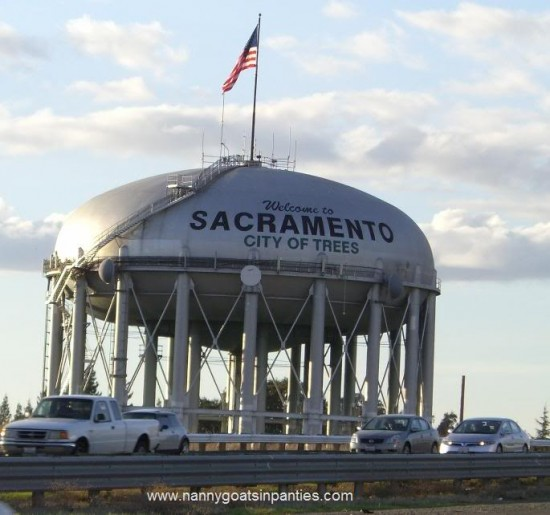 sacramento, city of trees, sacramento trees per capita, sacramento photos, water tower