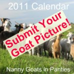 NGIP Calendar submit pic 200x200