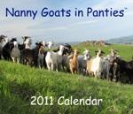 Nanny Goat in Panties Calendar