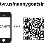 QR Code to vote for NGIP