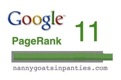 google pagerank 11