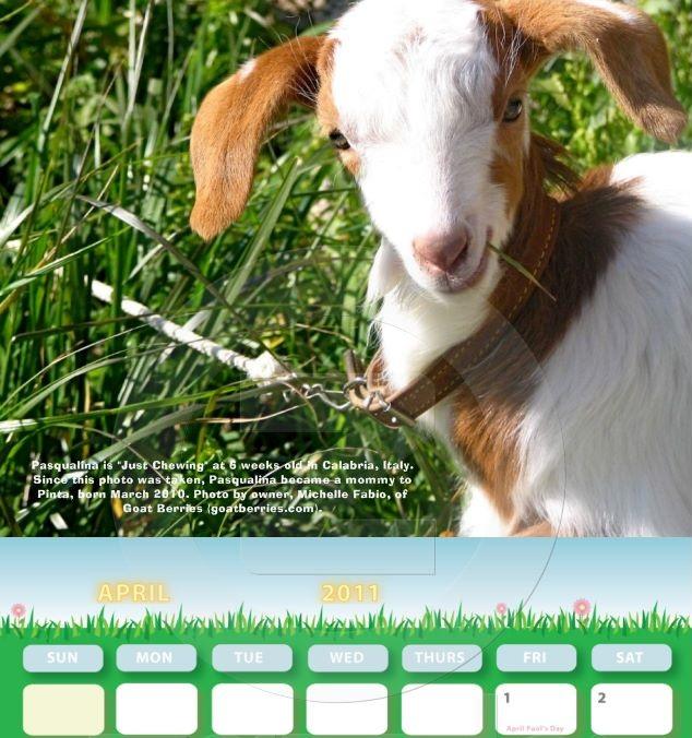 NGIP 2011 Calendar - Miss April